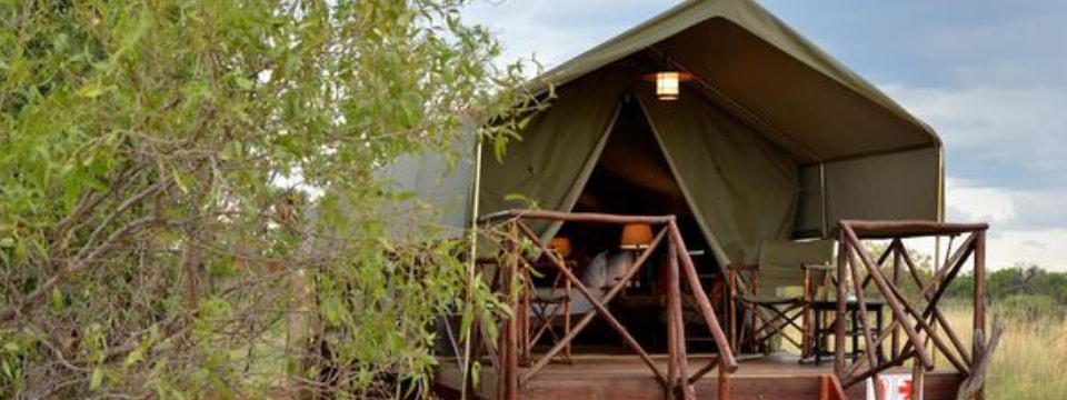 Oasis lodge tent